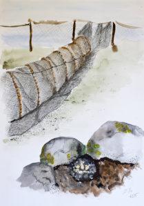Tušš, akvarell (2015)