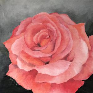 """õlimaal """"Roos"""" (40x40, 2018)"""